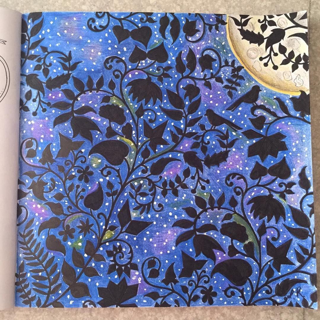 #patience #johannabasford #coloriageantistress #arttherapie #art #foretenchantée #oceanoperdidotop #jardimdascores #lostoceancolors http://Facebook.com/CoLaurietavie @johannabasford