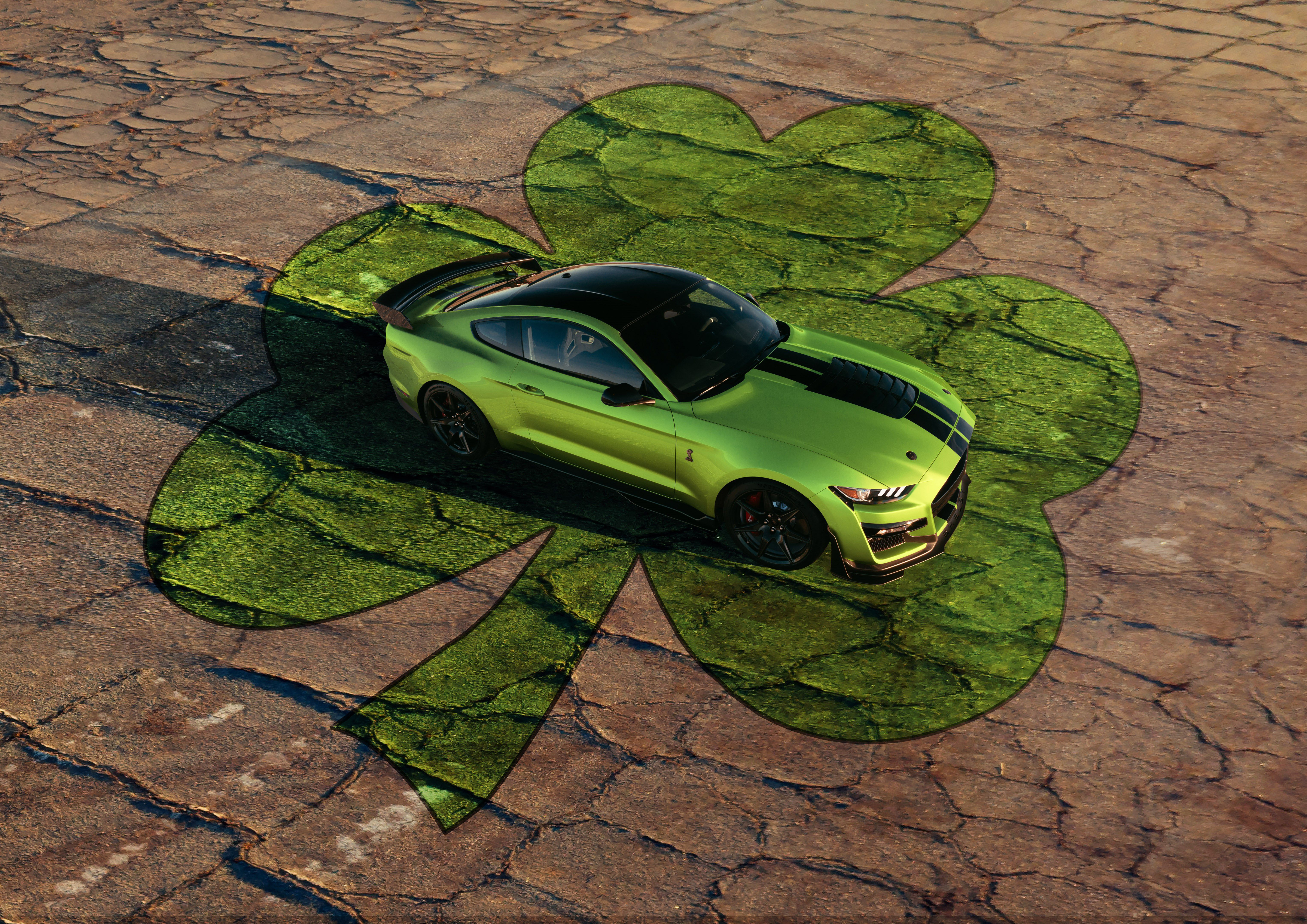 Ford Shelby Gt500 In Grabber Lime Has Saint Patrick S Day Spirit And Then Some Ford Mustang Shelby Gt500 Ford Mustang Shelby Mustang Shelby