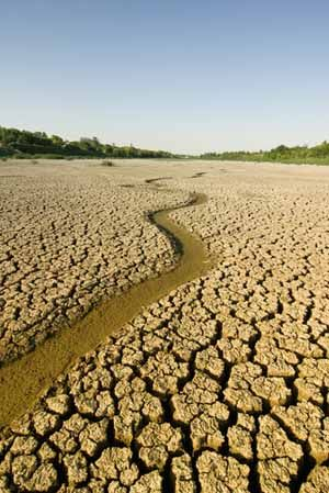 images of dry rivers - Google Search | Dry river, Country roads, River