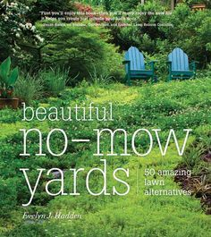 Low Maintenance Landscaping: Replace Your Lawn With Grass Alternatives    Green Homes   Natural