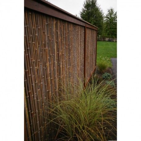 Bamboo Bambussichtschutz Black Blackroll Fuss Fencing Natural Natural Black Bamboo Fencing 1 X 4 X 8 Bambuss In 2020 Bamboo Fence Fence Decor Backyard Privacy