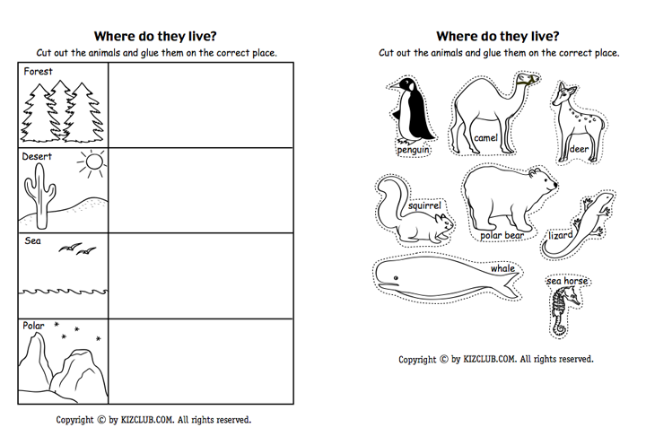 Pin By Tricia Stohr Hunt On Animals Life Science Life Skills Classroom Zoo Activities