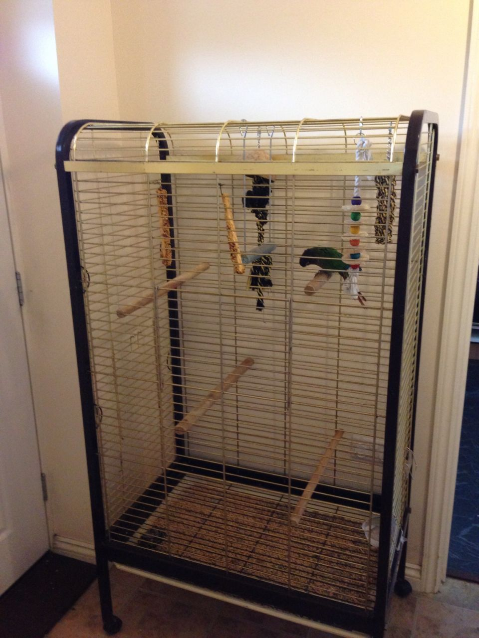 big parrot cages for sale