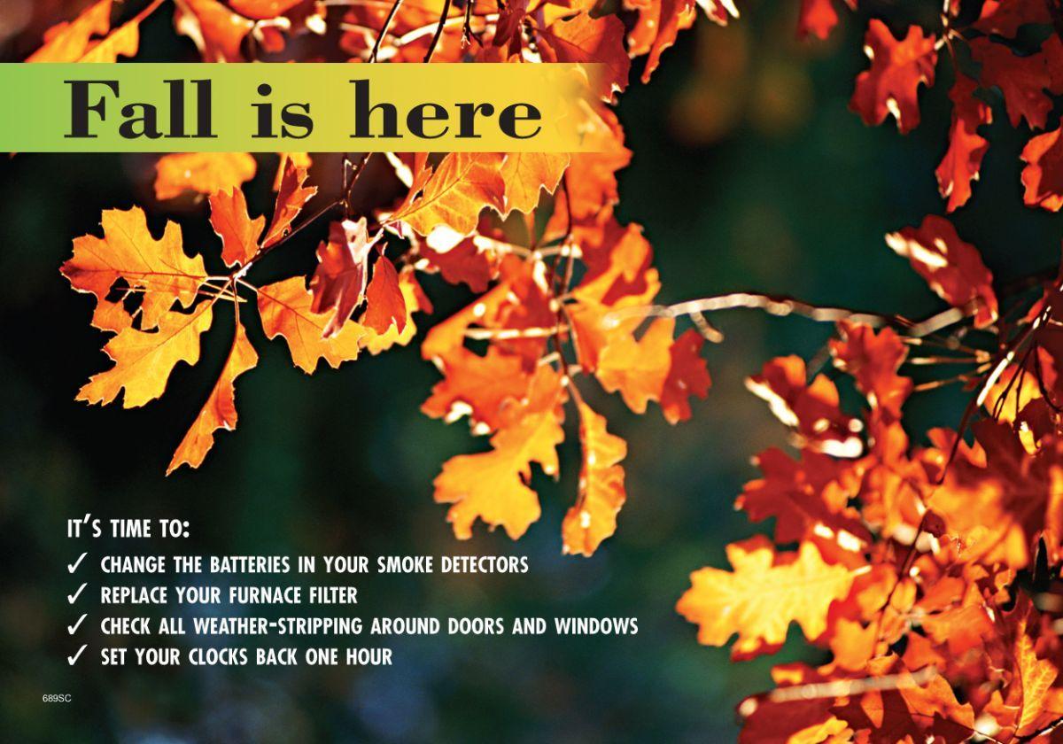 Fall Time Change Postcards