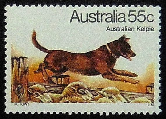 This Australian Kelpie Dog Australia Postage Stamp Art Is Handmade By Our Family In Vancouver Canada Postage Stamp Art Australian Kelpie Australian Kelpie Dog