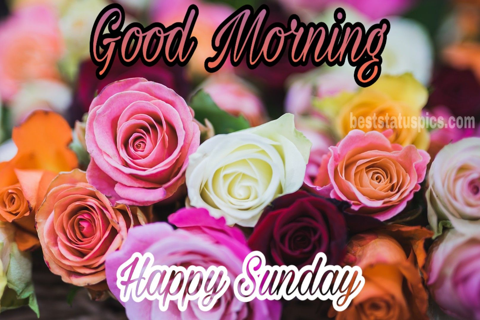 Good Morning Happy Sunday Images For Whatsapp DP [2020] in