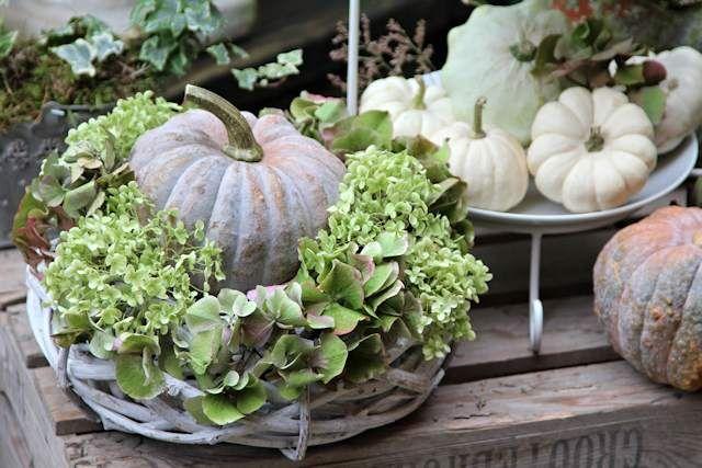 Kranz k rbis hortensien pinteres for Dekoration herbst