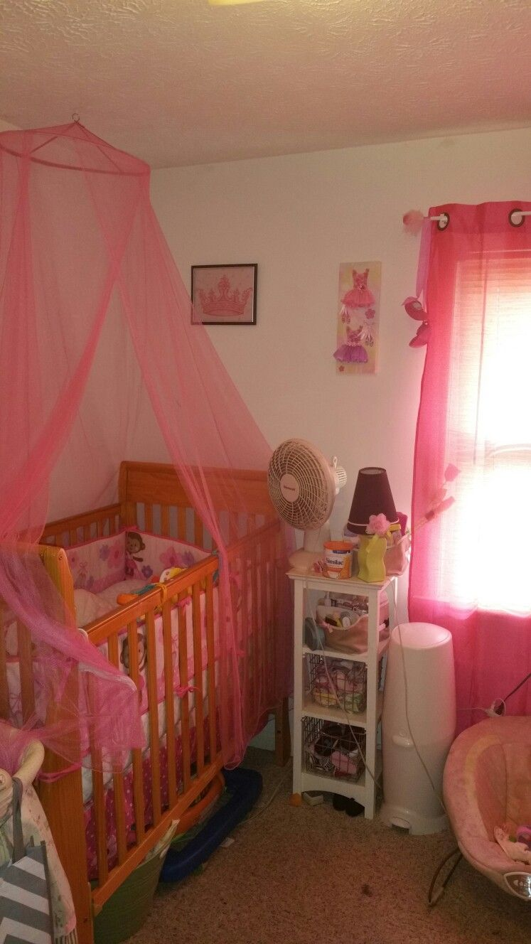 Pink canopy over crib