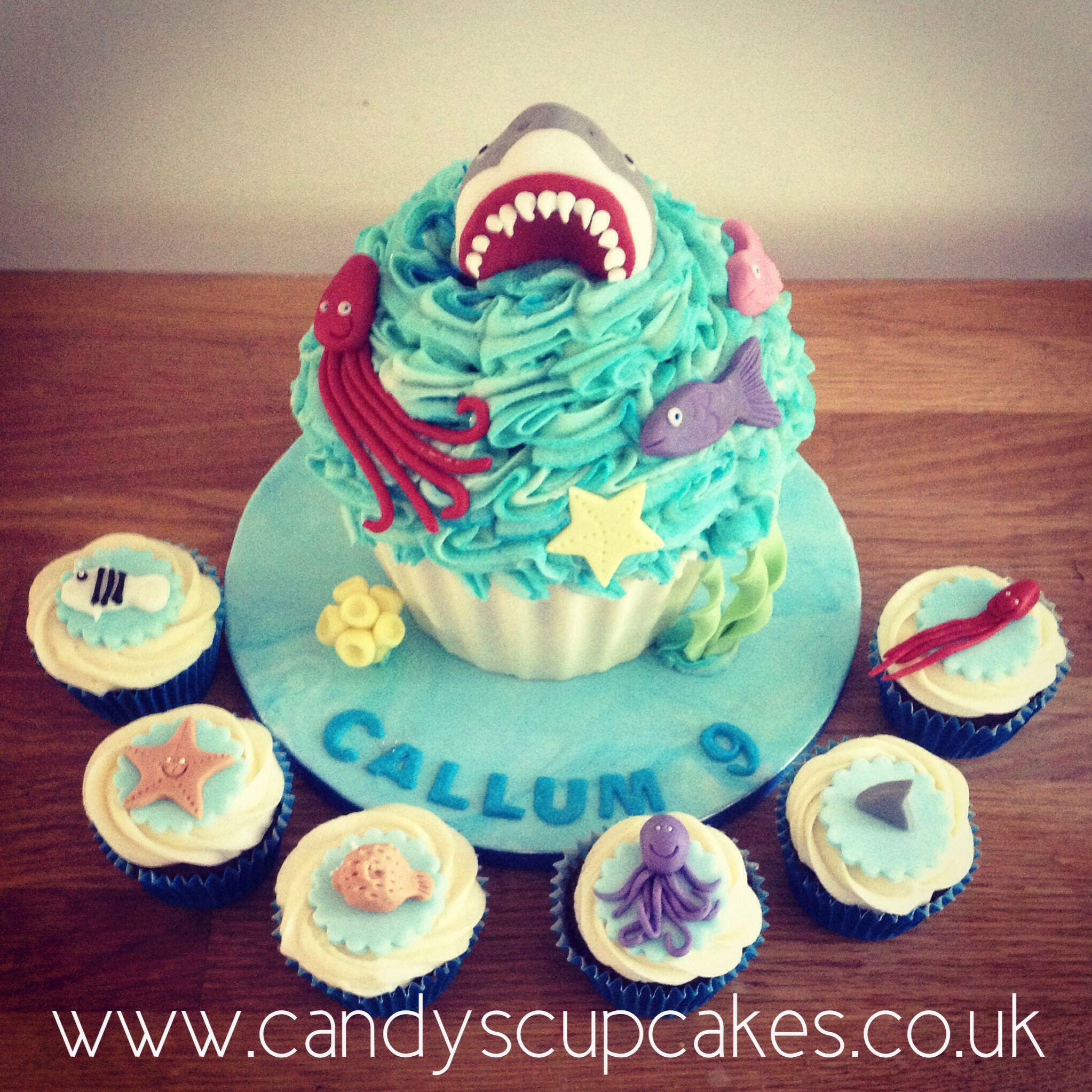 Shark Cake Sea Life Fish Birthday Cake Giant Cupcake