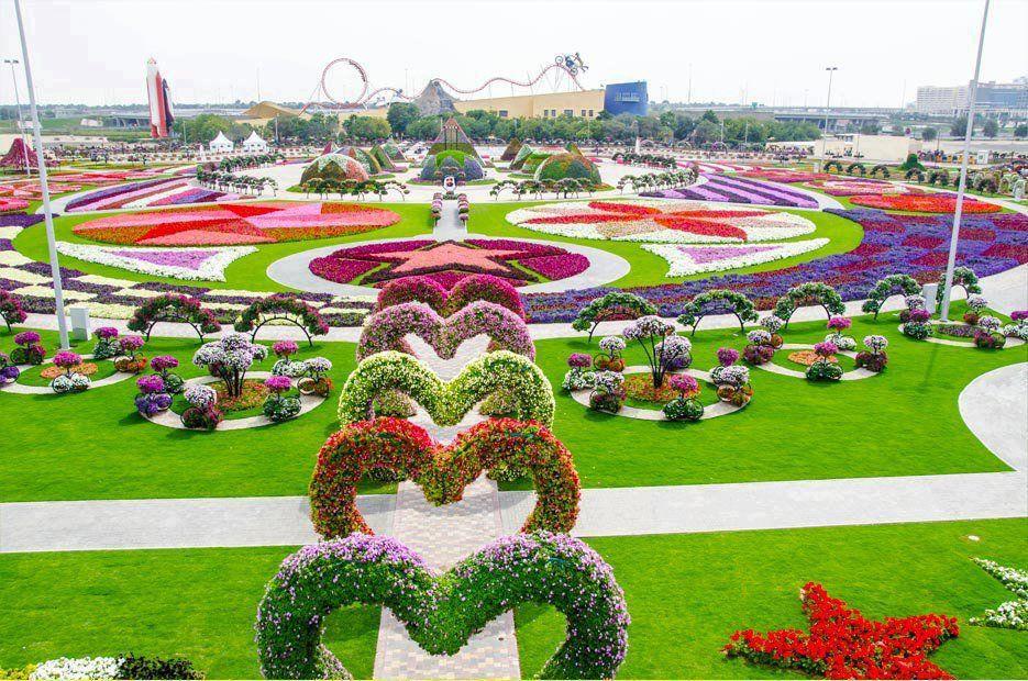 Dubai miracle garden Цветоводство, Дубай, Красивые места