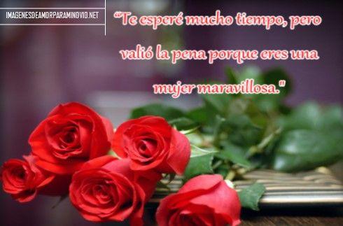 Imagenes De Rosas Con Frases De Amor Para Mi Novia Verso Good