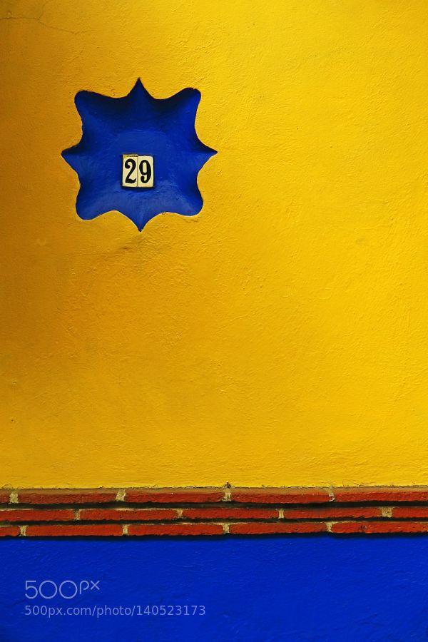 Coyoacán Ciudad de México by sfbetrian