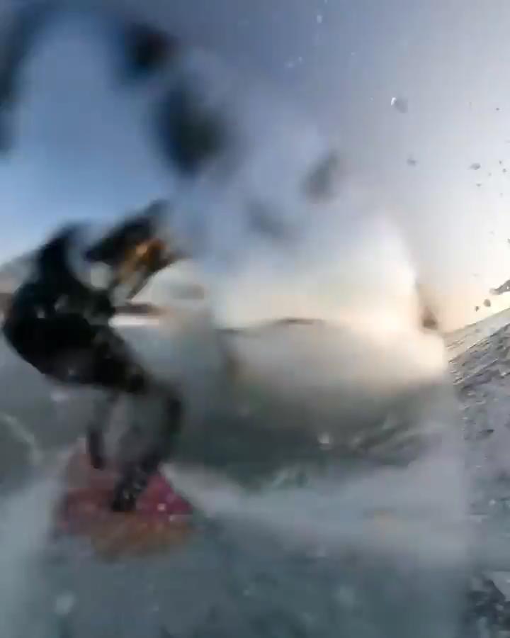 Surf UP!!