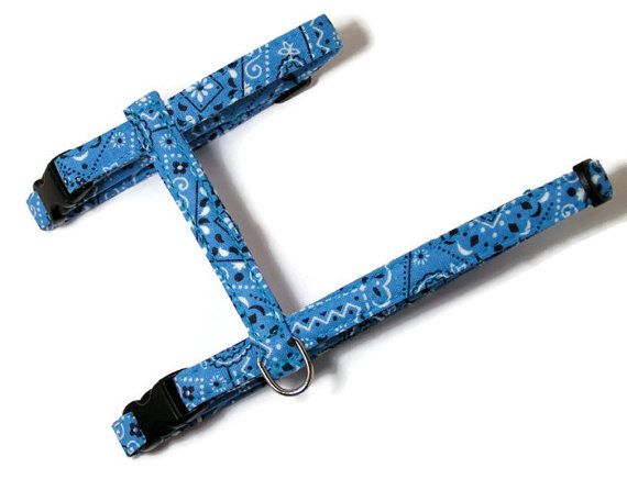 Cat Harness  Sky Blue Bandana by PawsnTails on Etsy, $23.00