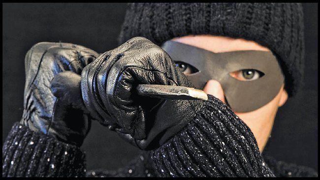 cat burglar | Burglar thief cat burglar