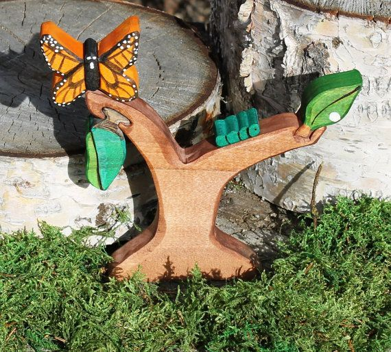 Butterfly Life Cycle Set Natural Eco Friendly Waldorf