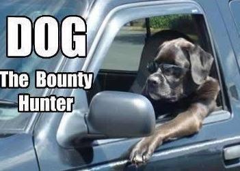 Dog The Bounty Hunter Dog The Bounty Hunter Funny Animal