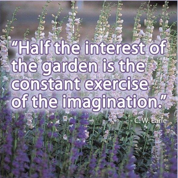 Pin By Barbara Harris On Wisdom Garden Quotes Gardening Humor Garden Whimsy