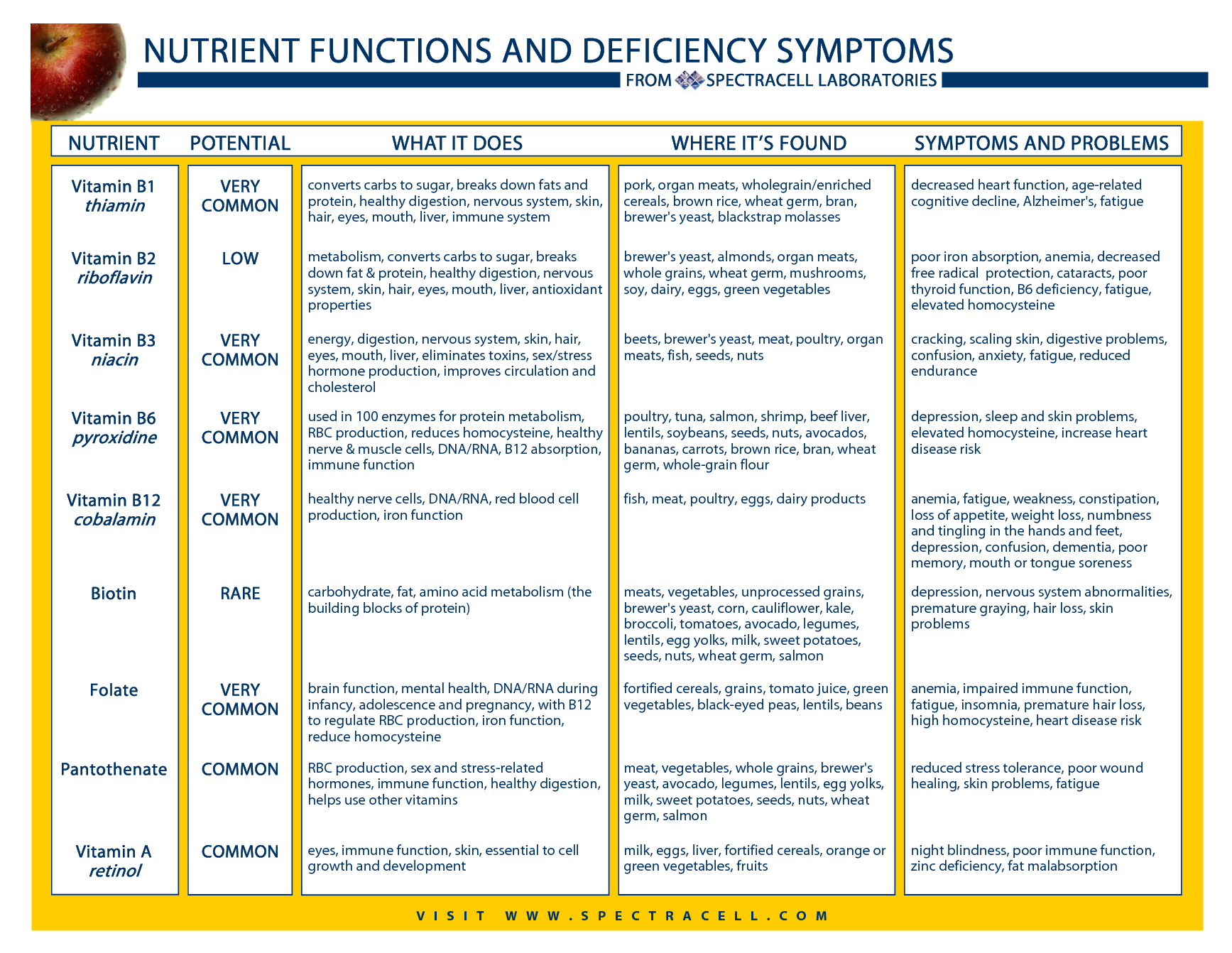 Vitamin deficiency symptoms chart nutrient functions and from spectracell health body pinterest vitamins immune system also rh