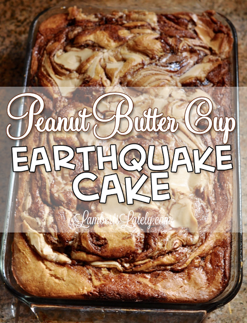 This recipe for Peanut Butter Cup Earthquake Cake is one of the most addictive things I've ever made!  The chocolate and peanut butter frosting swirls make it so rich and decadent.  This is a must-pin!