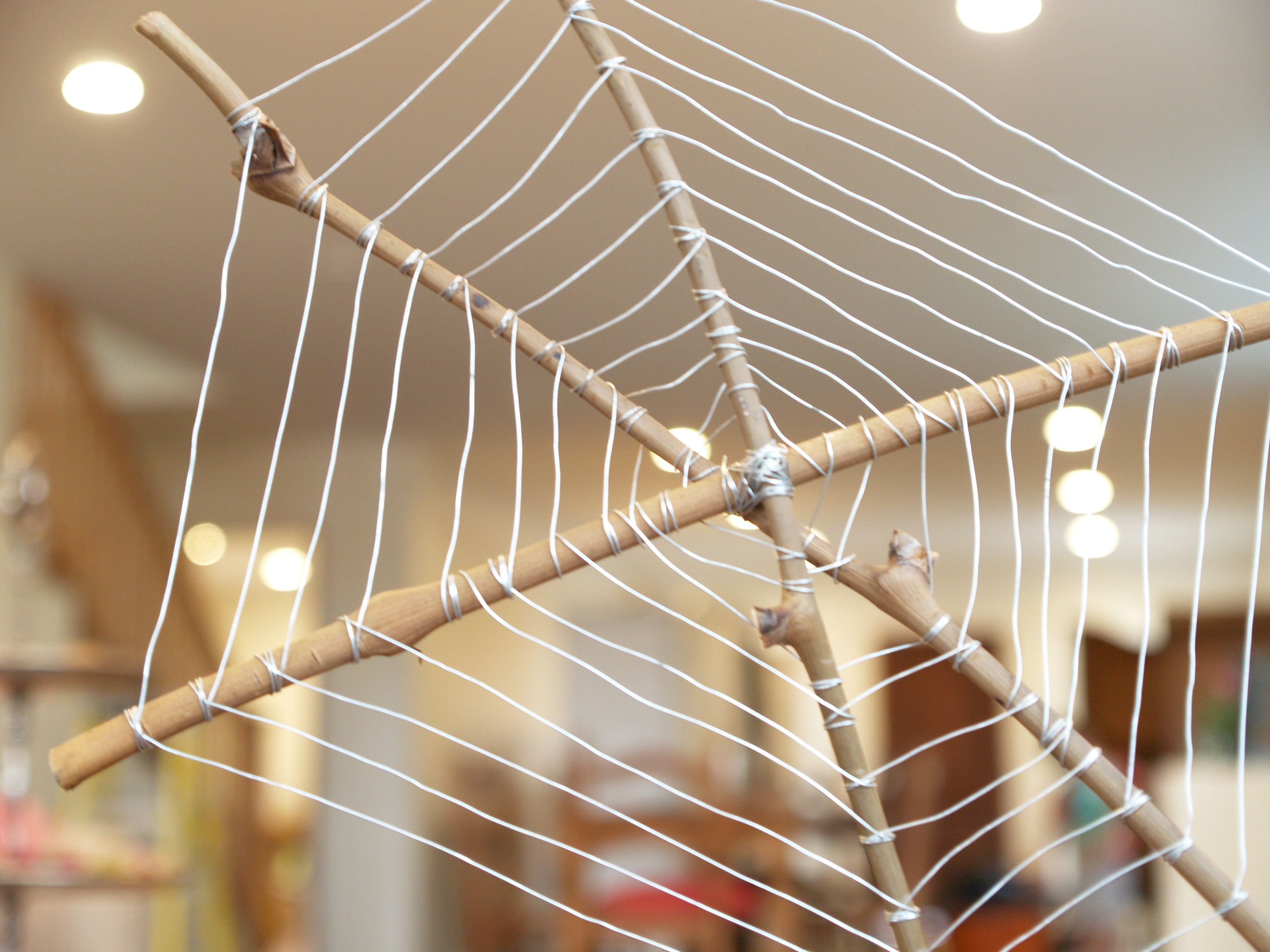 Spider Web Made From Sticks And String