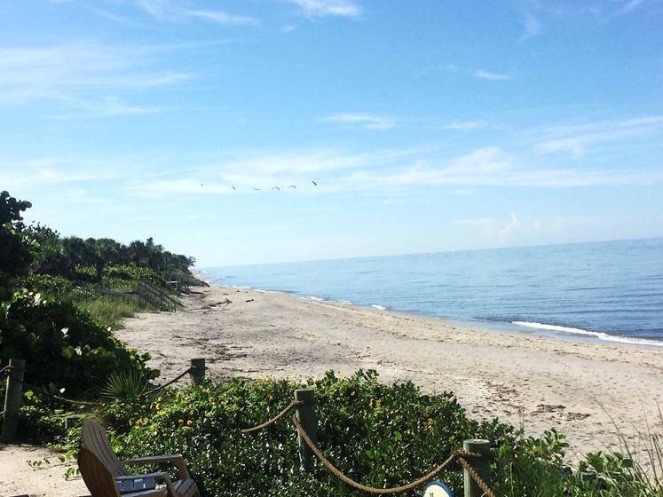Manasota Beach to our south! | Pearl beach, Englewood ...