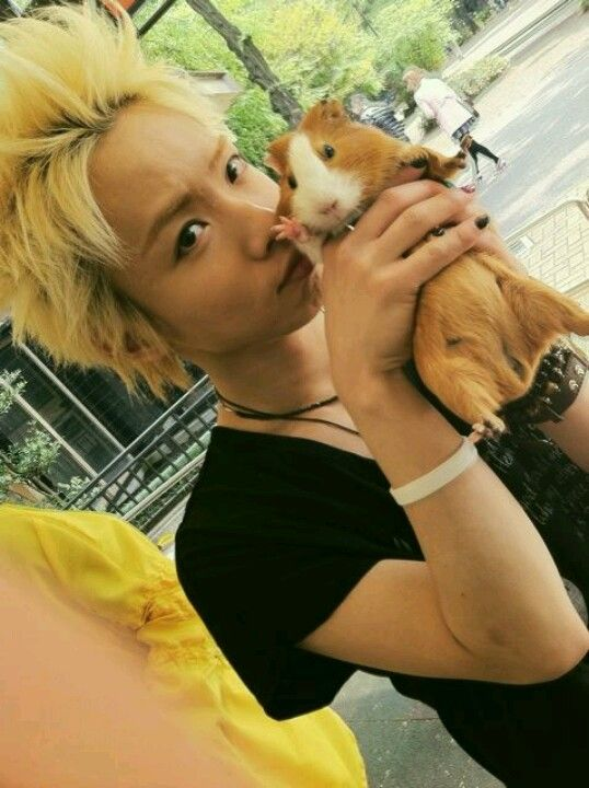 Oh my god, he's so adorable - Hiroto. Alice Nine.