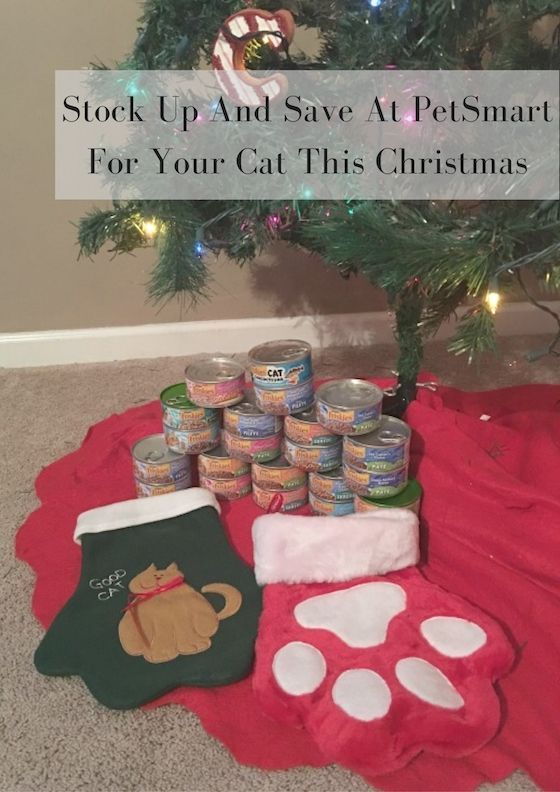 Stock Up And Save At Petsmart For Your Cat This Christmas Petsmartcart Ad Christmas Cats Petsmart Christmas