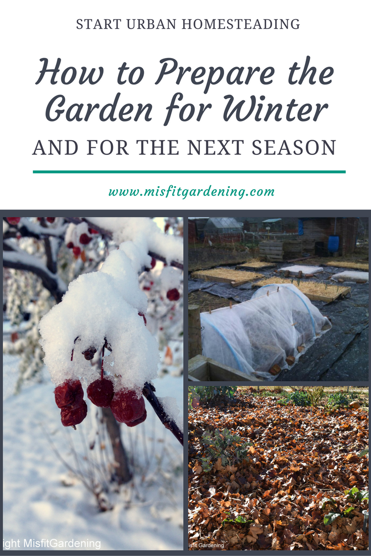 e6d78fc12fcbbfc5d84381fd754ef58b - What Can Gardeners Do In Winter