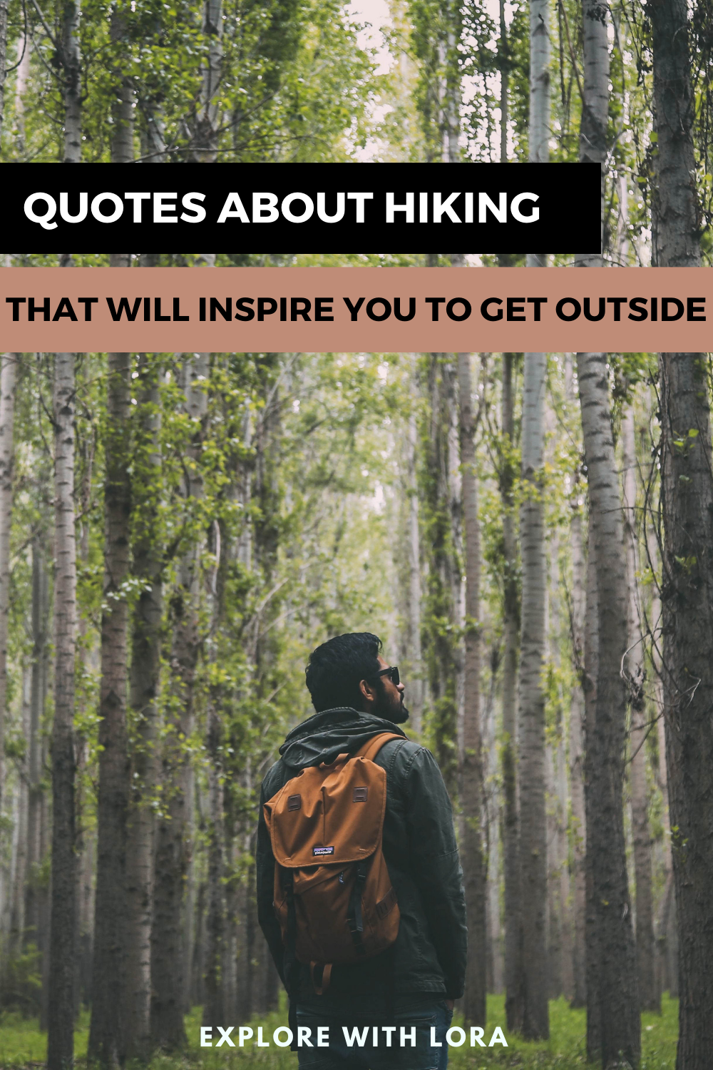 80 Quotes About Hiking That Will Inspire You To Get Outdoors Hiking Quotes Hiking Quotes Adventure Hiking Quotes Funny