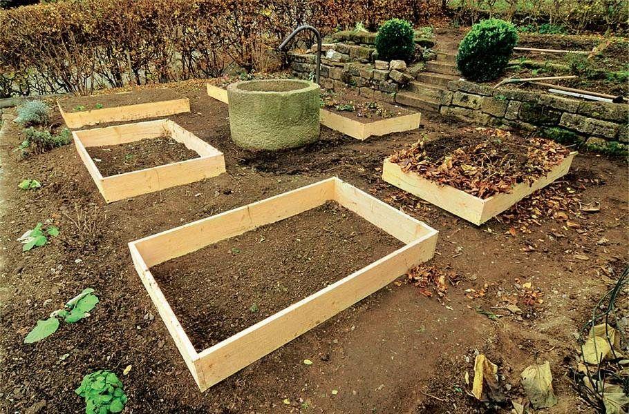 Gemüseanbau in Holzrahmenbeeten