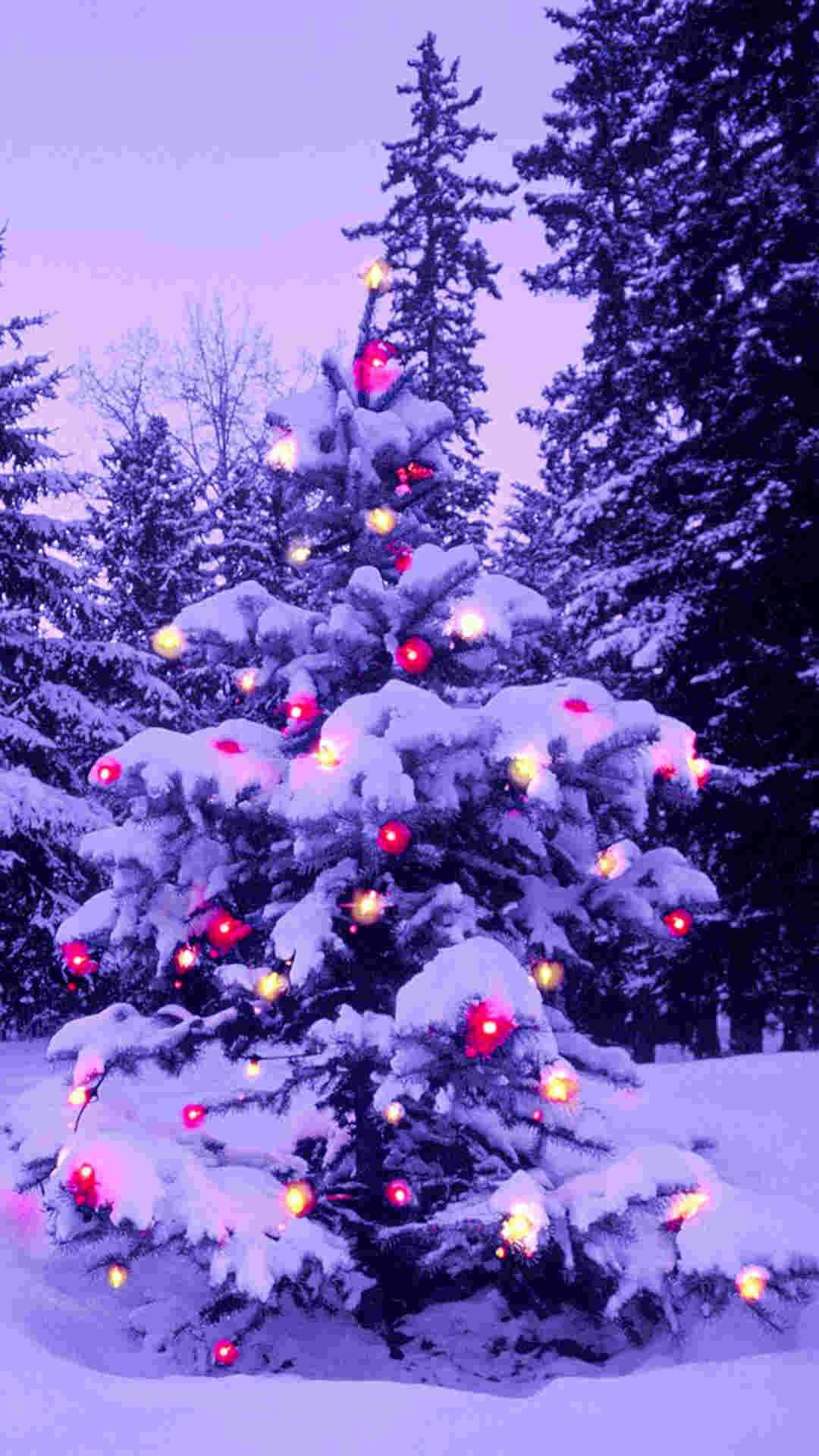 christmas wallpaper for iphone pink light 2014 tree iphone 6 plus wallpaper 13814