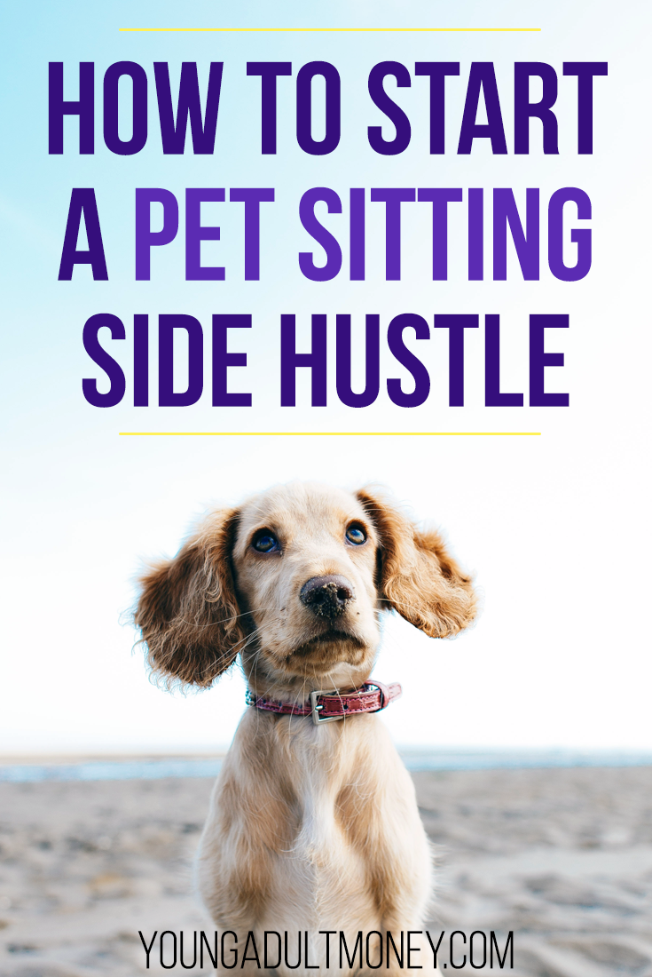 How To Start A Pet Sitting Side Hustle Pet Sitting Pet Sitting Business Side Hustle