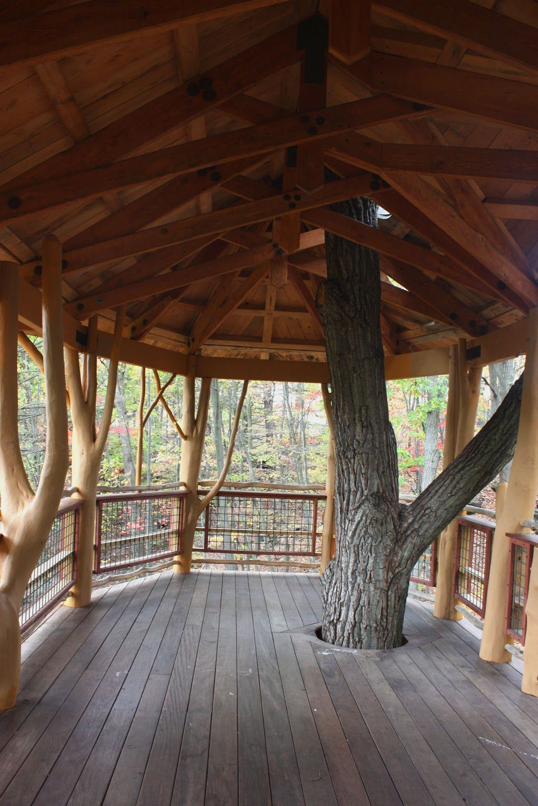 inside of simple tree houses finding a new park to visit