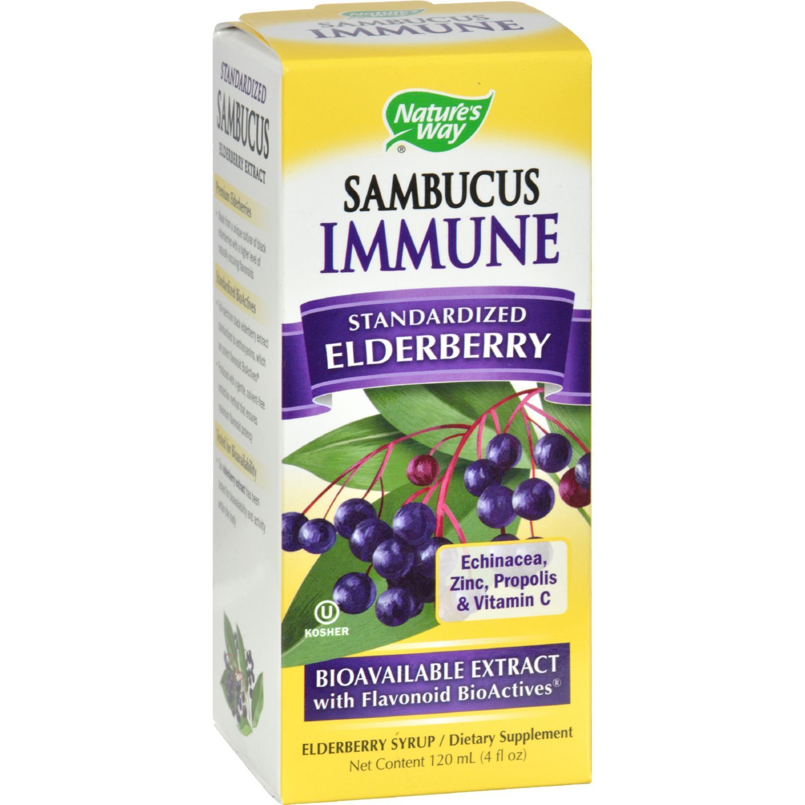 Nature's Way Sambucus Immune Syrup - 4 Fl Oz  #nutrorganics #supplements #goals #organic #health #vi...