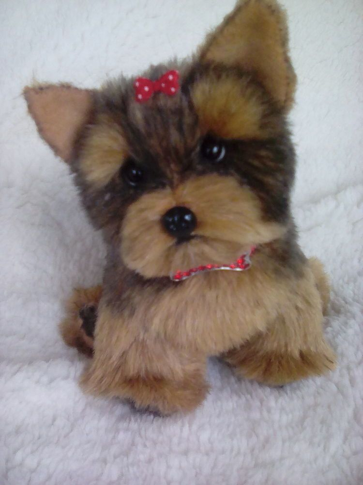 Little Puppies That Look Real 2021