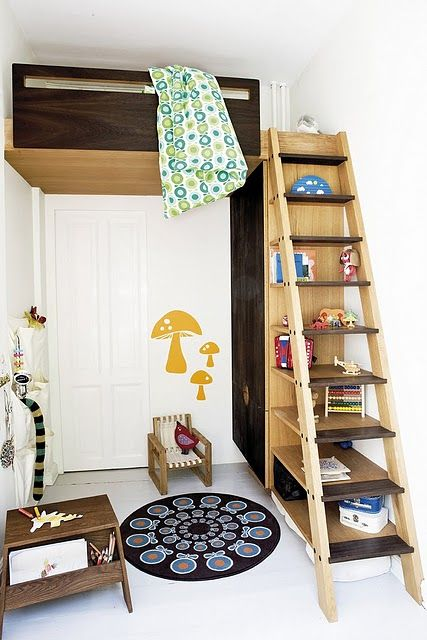 Lofted Bed Bunk Bed Ladder To Bed Children To Young Adult