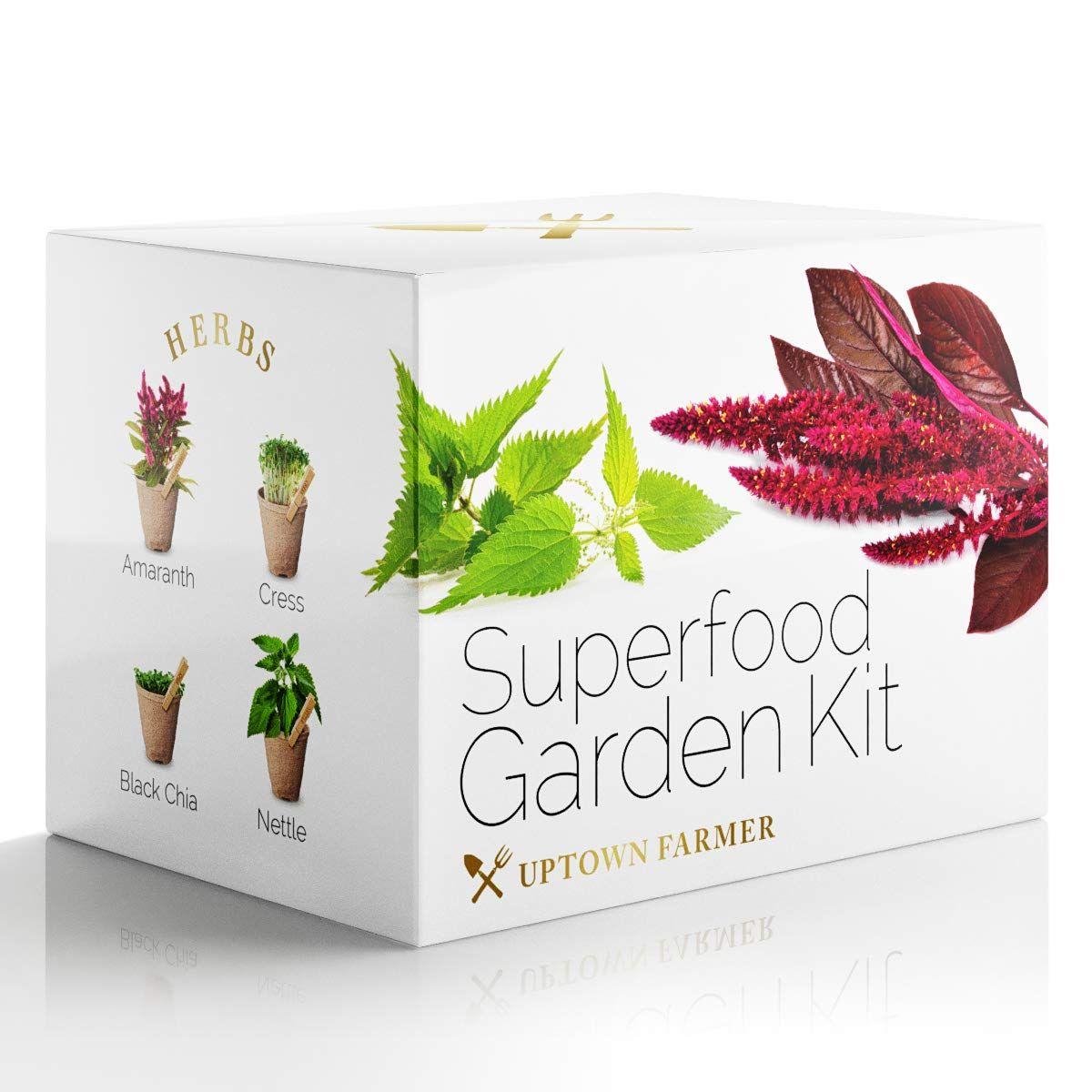 Herb Garden Starter Kit Indoor Amazing Grass Green