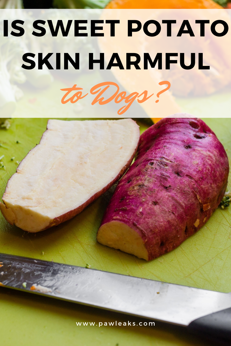 Is Sweet Potato Skin Harmful to Dogs