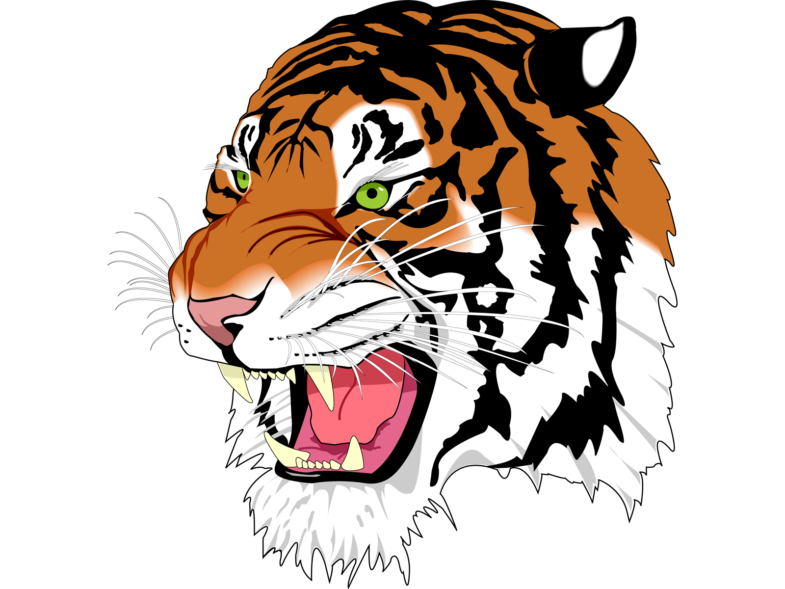 tiger face clipart isolated stock photo by nobacks com tattoos rh pinterest co uk tiger face clip art free