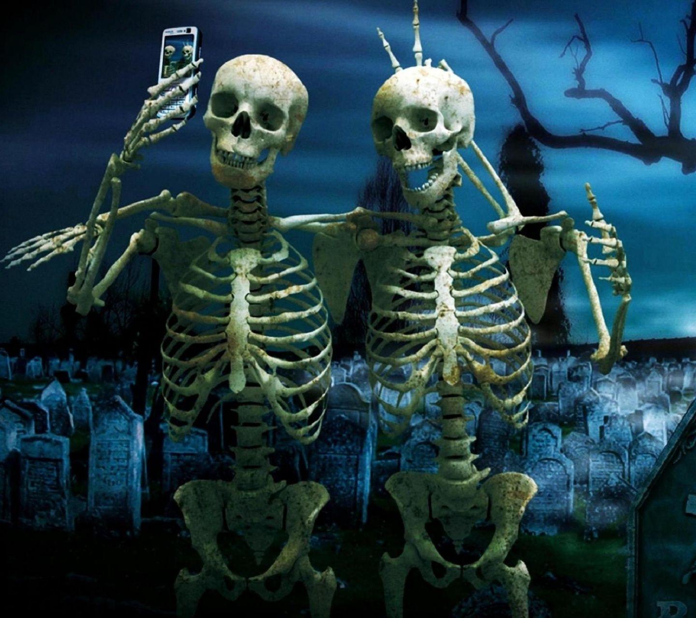 одной скелеты на отдыхе картинки можно только