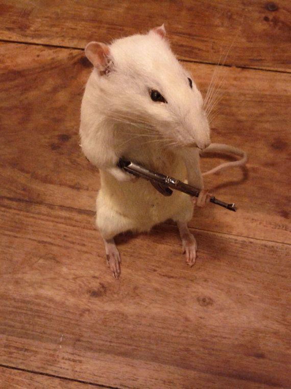Cute Taxidermy rat with machine gun