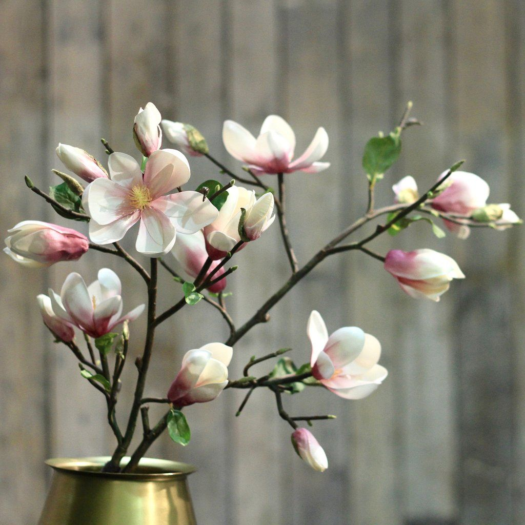 Pink Tall Magnolia Branch Bunch Of 6 Stems Magnolia Branch Magnolia Flower Flower Branch