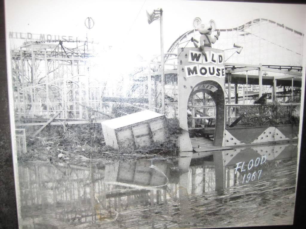 Wild Mouse at Coney Island - 1967 flood. | Coney island history, Cincinnati  ohio, Coney island