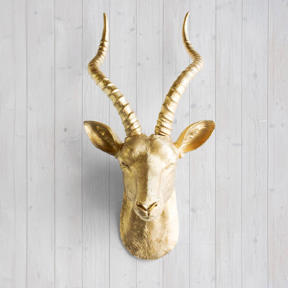 Faux Taxidermy Antelope Head The Wall