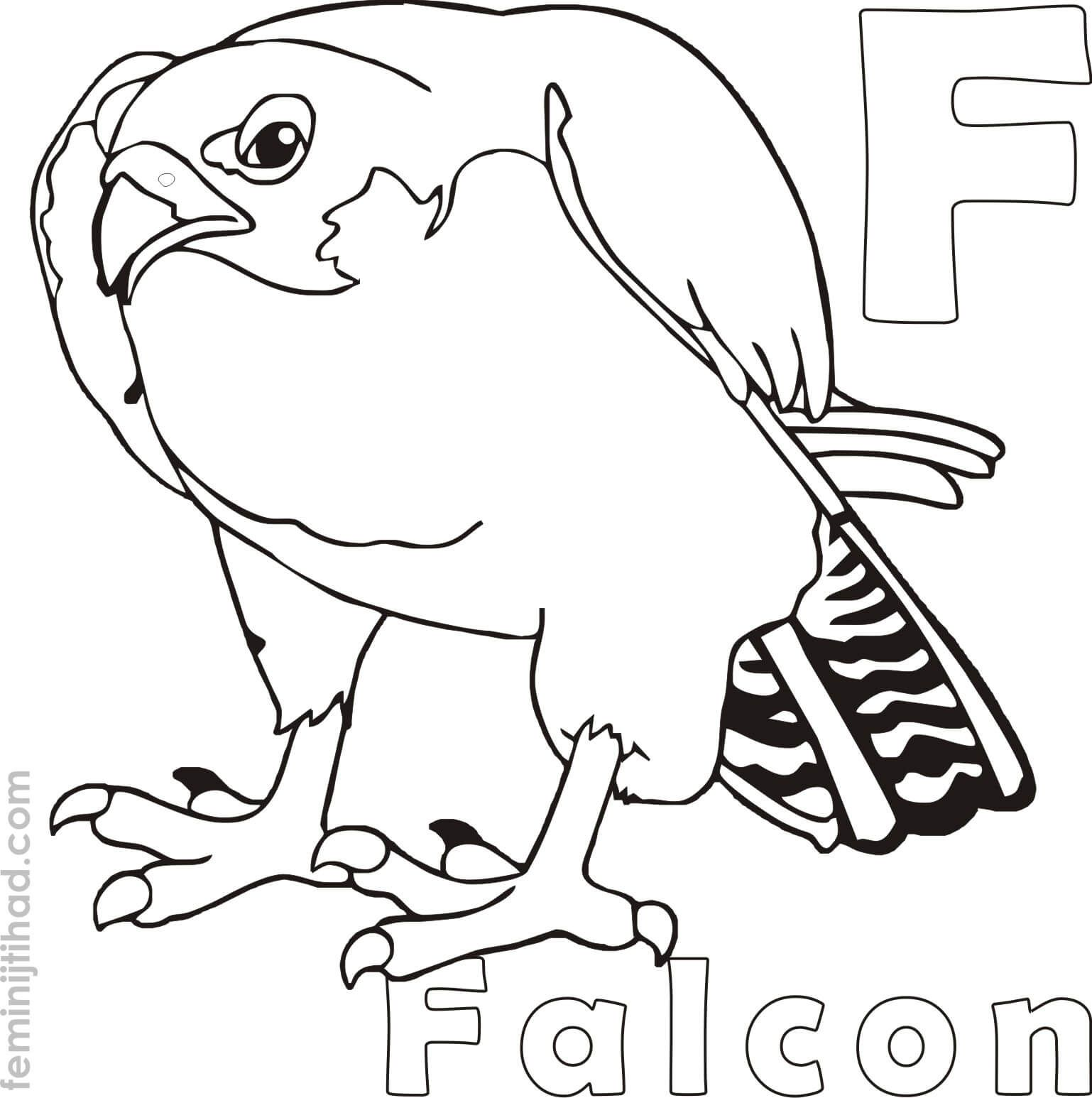 F For Falcon Coloring Pages To Print Bird coloring pages