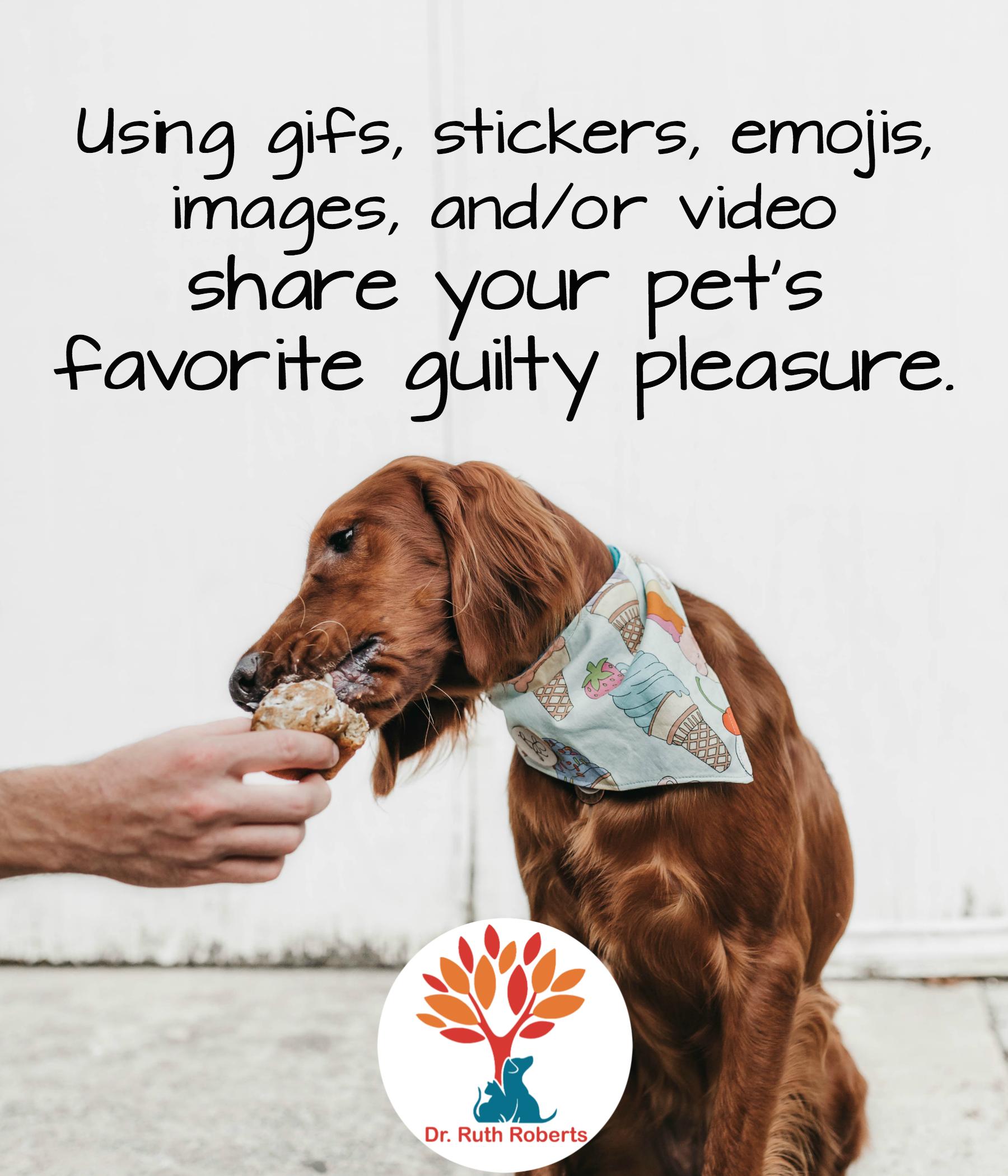 #quotes #animals #guilty #pleasure