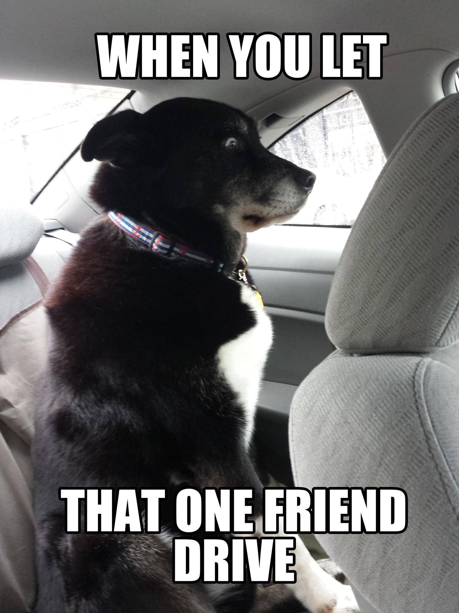 #Tag That #Friend D
