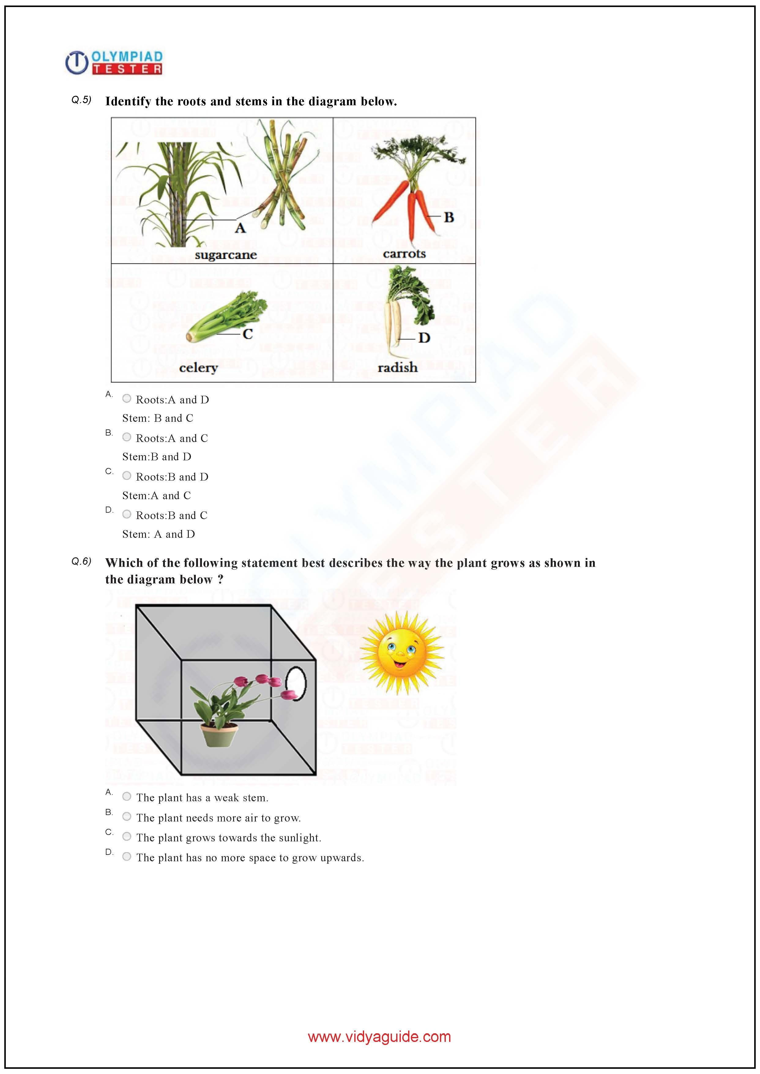 Download Grade Science Olympiad Sample Papers As Pdf Worksheets
