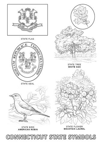 Connecticut State Symbols coloring page from Connecticut